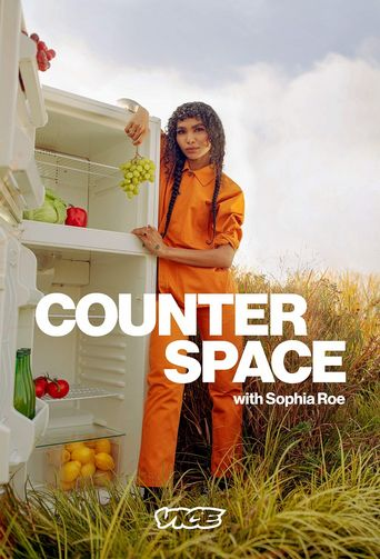 Counter Space Poster