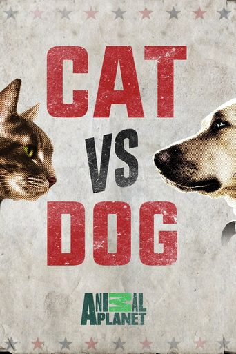 Cat Vs. Dog Poster