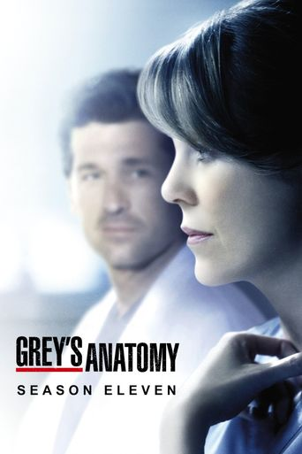 watch greys anatomy season 12 free