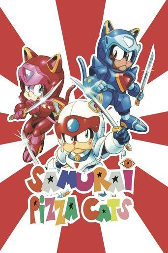 Samurai Pizza Cats Poster
