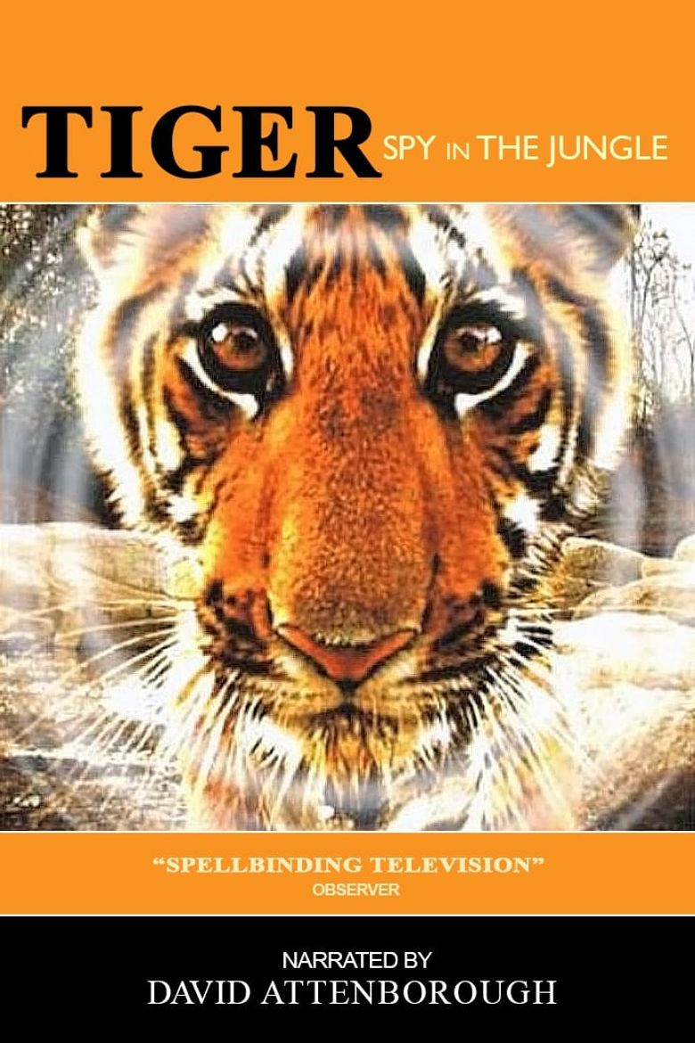Tiger - Spy In The Jungle Poster