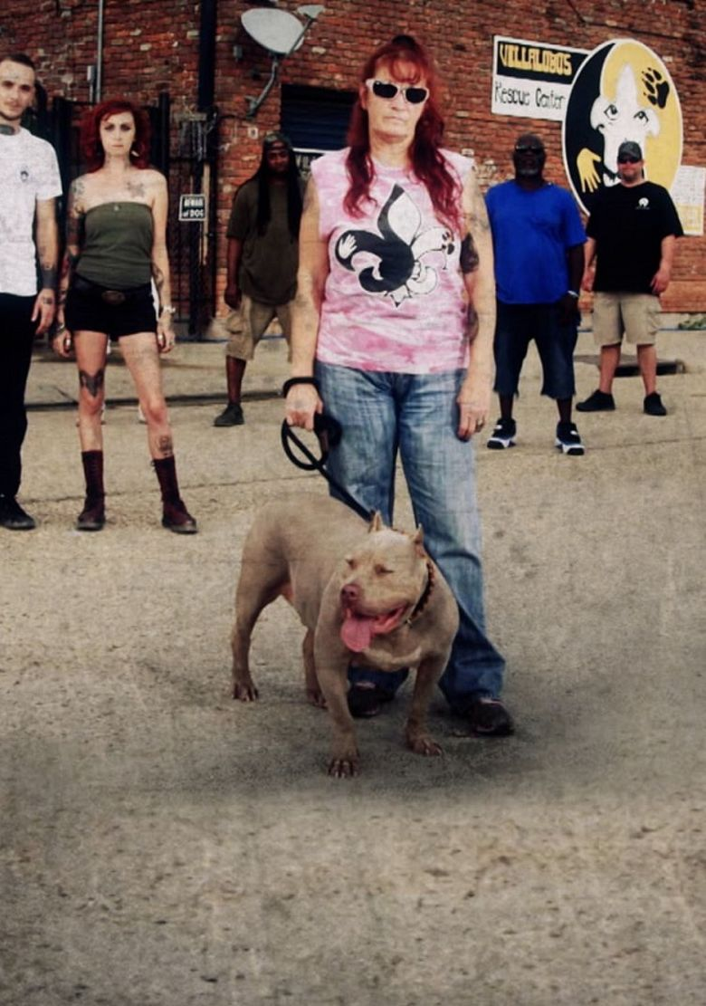 Pit Bulls & Parolees: Waiting for a Forever Home Poster