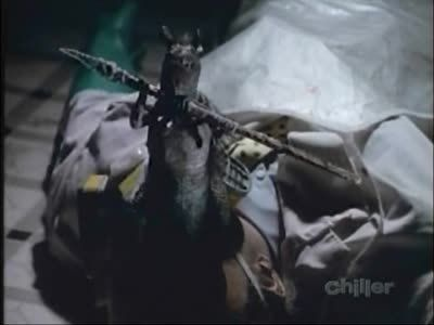 Season 03, Episode 01 Stressed Environment