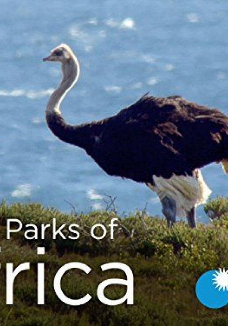 Great Parks of Africa Poster