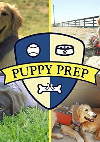 Puppy Prep Poster