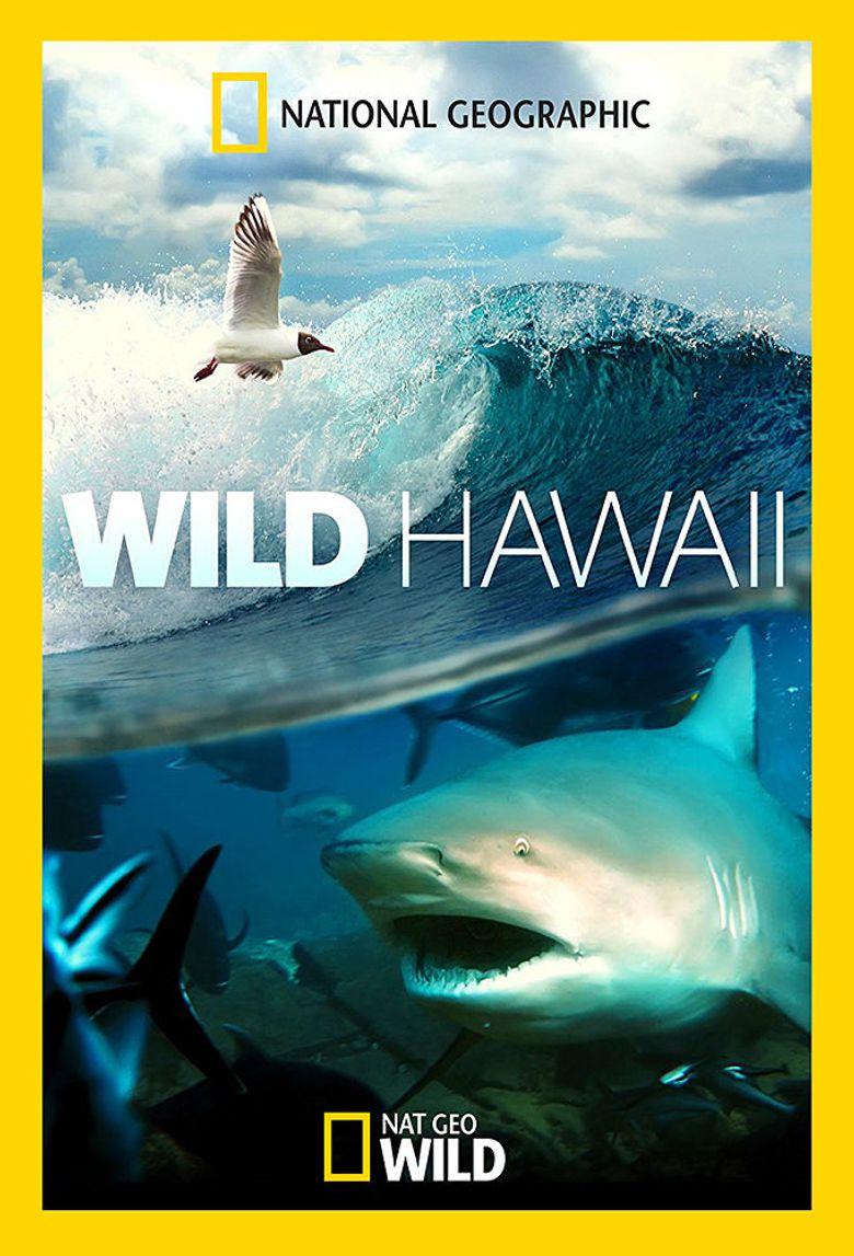 Wild Hawaii Poster