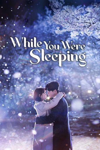 While You Were Sleeping Poster
