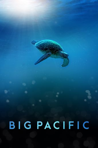 Big Pacific Poster