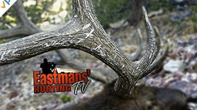 Watch SHOW TITLE Season 2013 Episode 2013 Backcountry Elk Hunting in Wyoming (Part 1)