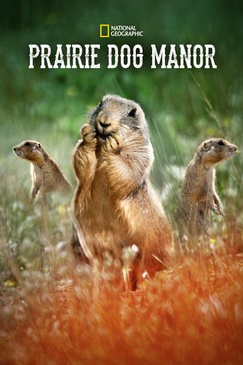 Prairie Dog Manor Poster
