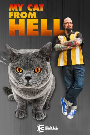 Watch My Cat from Hell