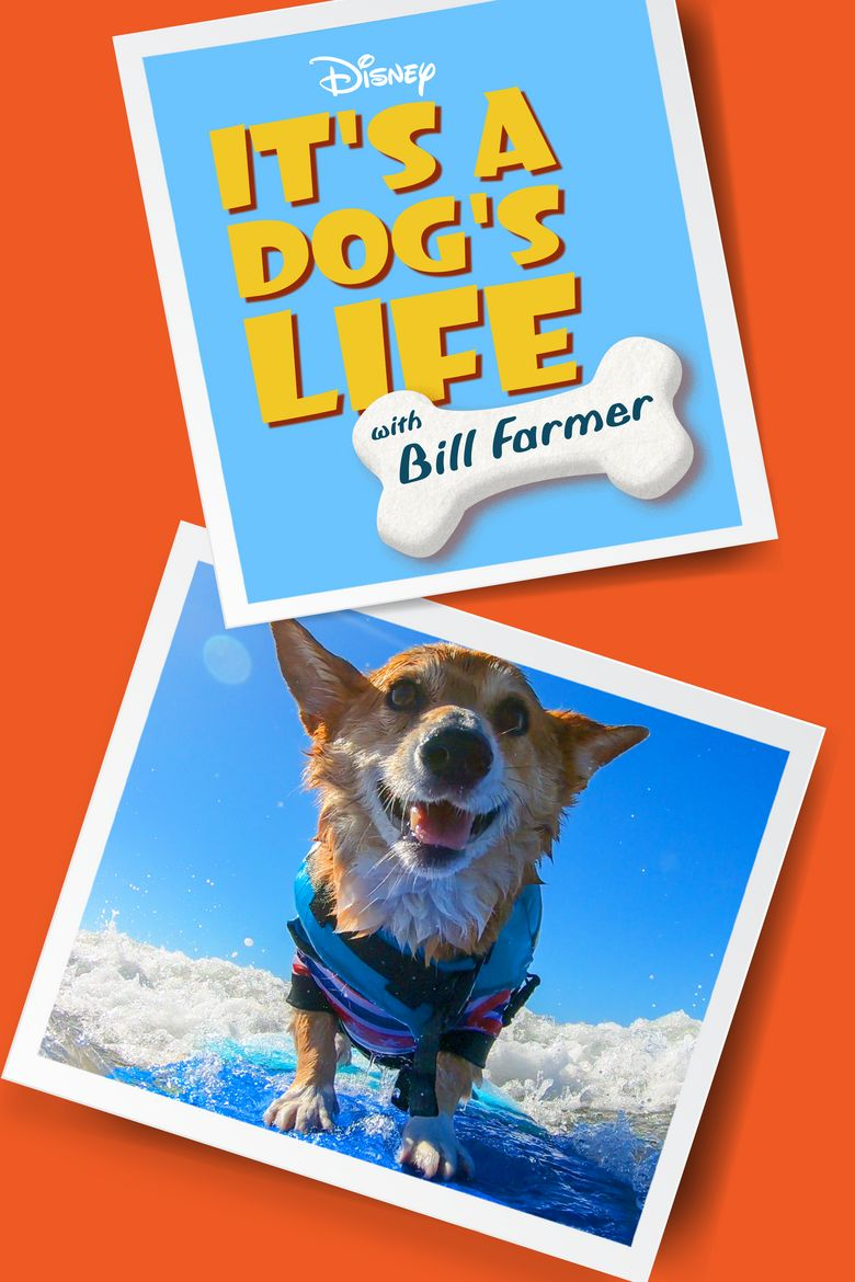 It's a Dog's Life with Bill Farmer Poster