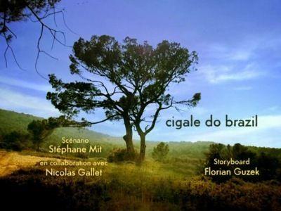 Season 01, Episode 59 Cicada Do Brazil