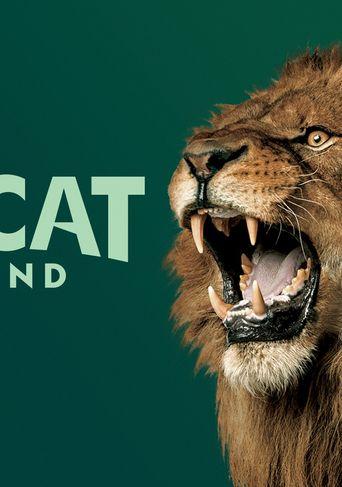 Big Cat Weekend Poster