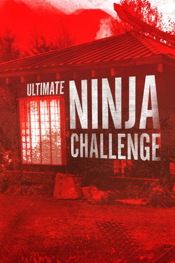 Ultimate Ninja Challenge Poster
