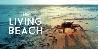 The Living Beach Poster
