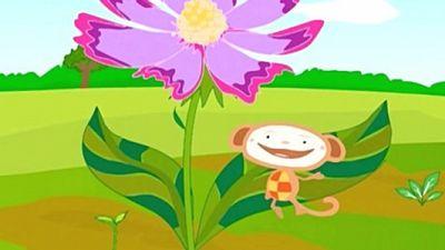 Season 02, Episode 05 Flower Field / Cow Shed