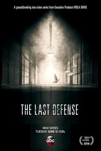 The Last Defense Poster