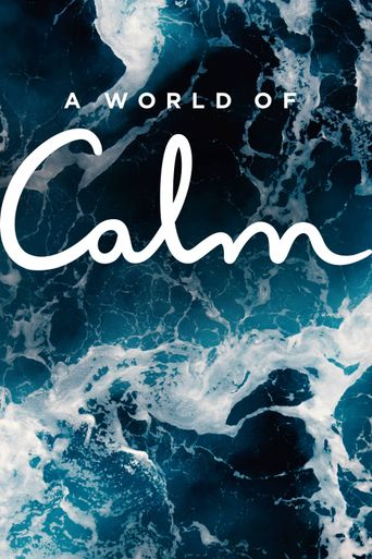 A World of Calm Poster