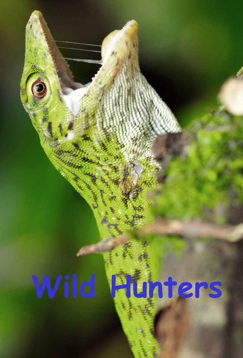 Wild Hunters Poster