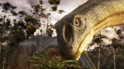 Season 01, Episode 05 Biggest: Whale vs. Argentinosaurus - Ep. 5
