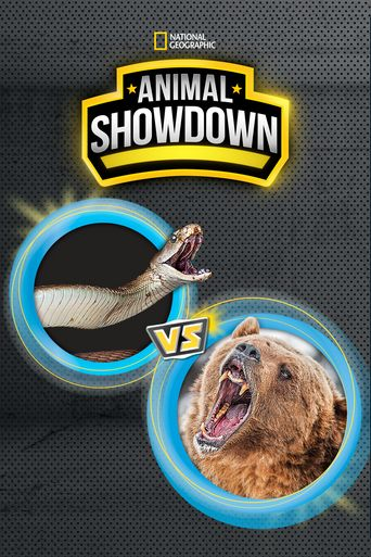 Animal Showdown Poster