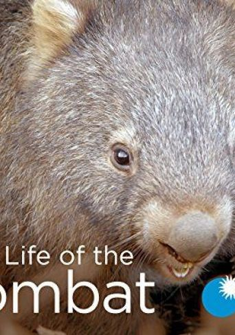 Secret Life of the Wombat Poster