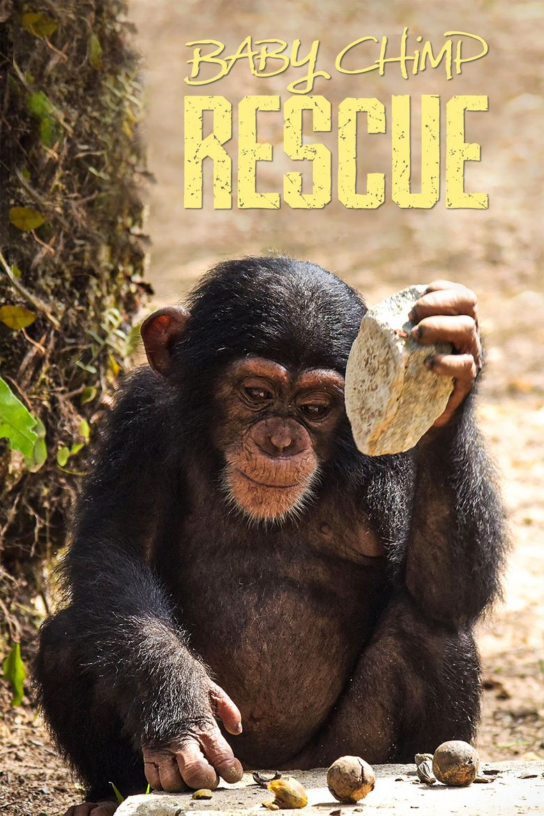 Baby Chimp Rescue Poster