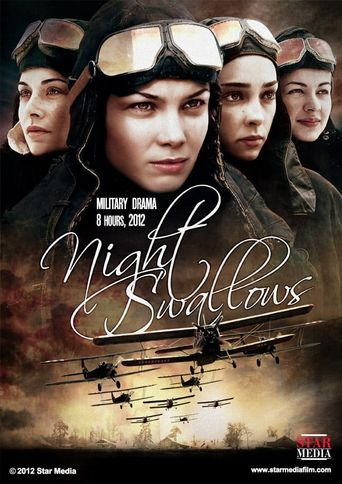 Night Swallows Poster