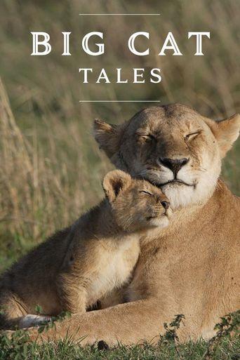 Big Cat Tales Poster