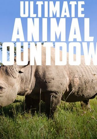 Ultimate Animal Countdown Poster