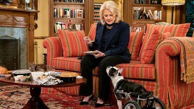 Season 11, Episode 11 The Wheels on the Dog Go Round and Round