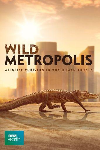 Cities: Nature's New Wild Poster