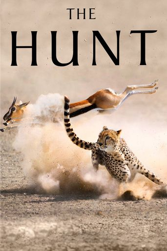 Watch The Hunt