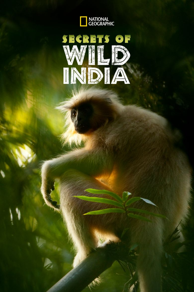 Secrets of Wild India Poster