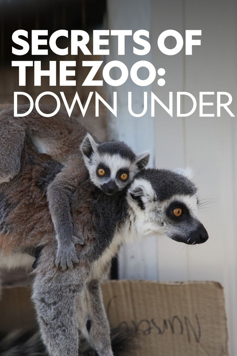 Inside the Zoo: Down Under Poster