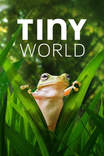 Tiny World Poster