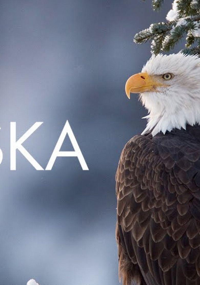 Wild Alaska Poster
