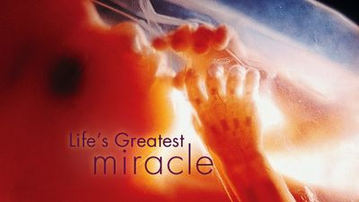 Season 29, Episode 07 Life's Greatest Miracle