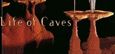 Season 30, Episode 02 Mysterious Life of Caves