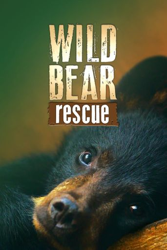 Wild Bear Rescue Poster