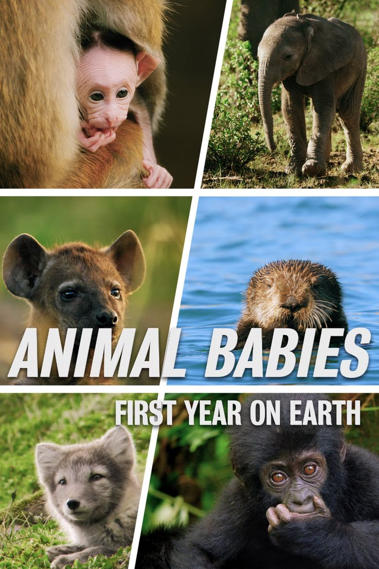 Animal Babies: First Year On Earth Poster