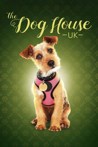 The Dog House Poster