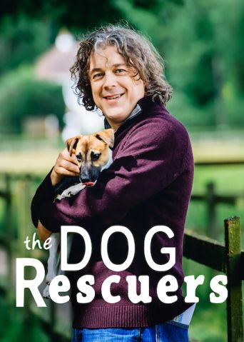 The Dog Rescuers with Alan Davies Poster