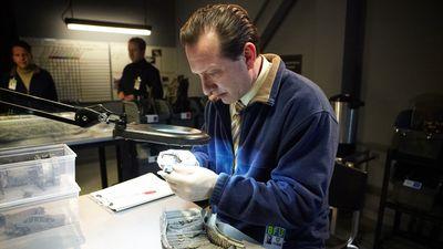 Season 13, Episode 03 Speed Trap (Hughes Airwest Flight 706)