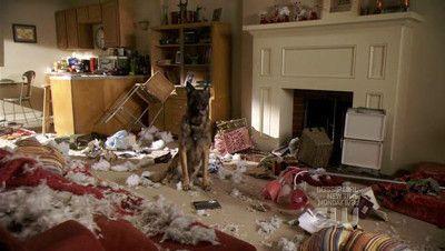 Season 01, Episode 06 Hound Dog