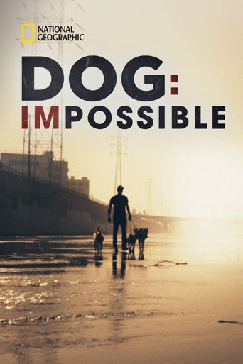 Dog: Impossible Poster
