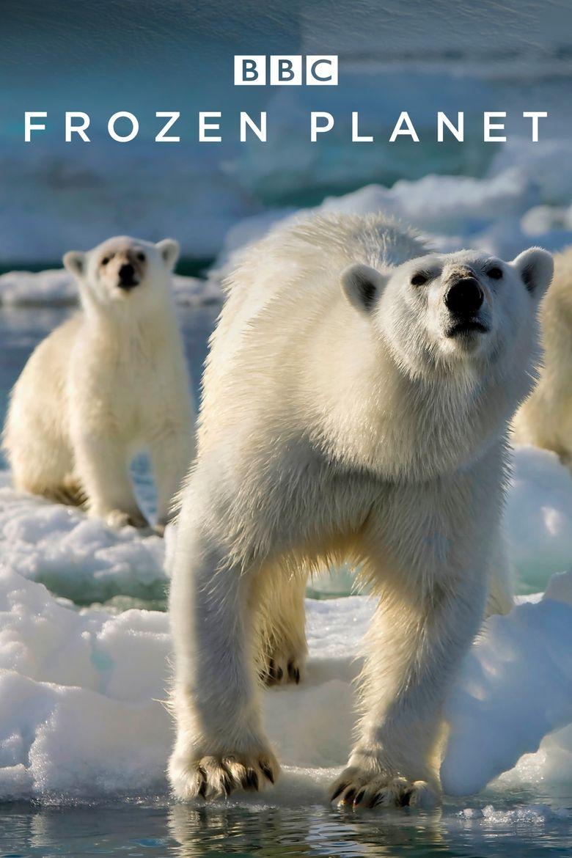 Watch Frozen Planet